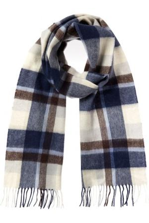 Barbour Country Plaid Scarf in navy blue