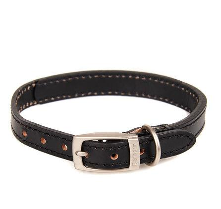 International Leather Dog Collar in black
