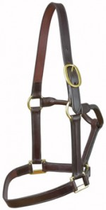 Brown One Buckle Leather Headcollar by E. Jeffries