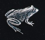 pewter frog badge