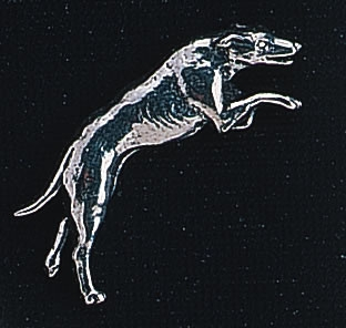 pewter greyhound badge