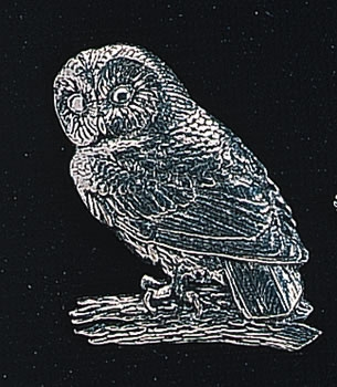 pewter tawny owl badge