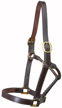 Brown Two Buckle Leather Headcollar by E. Jeffries